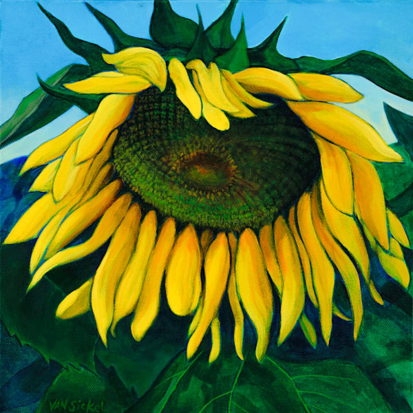 One Foot Sunflower by John Van Sickel | Kansas Art Gallery
