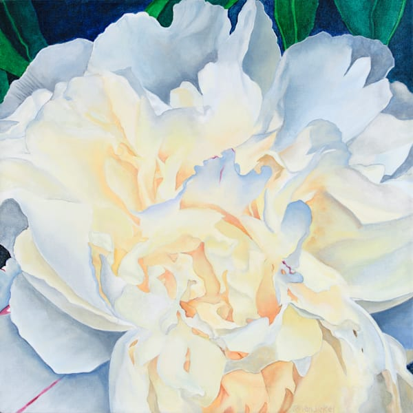 Peony 1 by John Van Sickel | Kansas Art Gallery