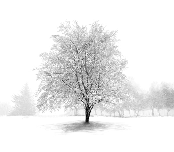 "Digital Etching titled ""Winter Tree"" by Eric Wallis."