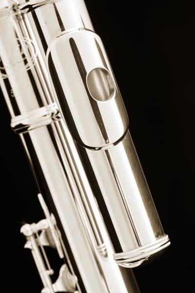 Alto Flute Mouthpipe Music Art 3454.01