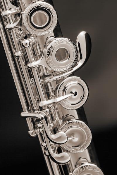 Soprano Flute Music Art in Sepia 3441.01