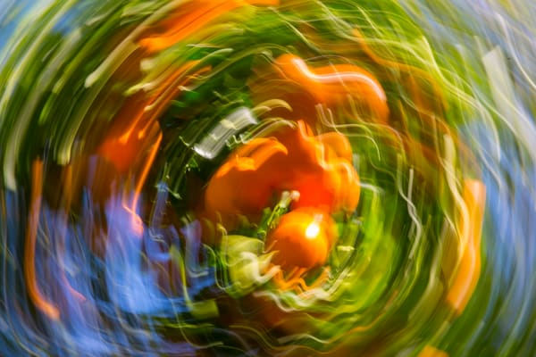 Natural Motion # 32 - Abstract Art Photographs for sale great for interior design. Ron Pickering Photography