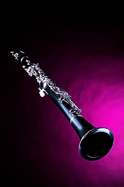 Clarinet on Pink Canvas Print 3011.02