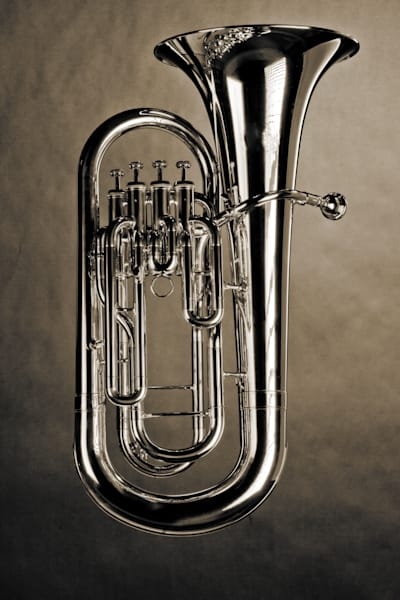 Suspended Wall Art Bass Tuba 3394.01