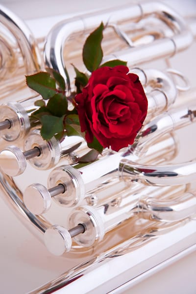 Silver Tuba With Red Rose Wall Art 023v