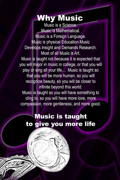 Tuba Why Music Canva Prints 4822.02