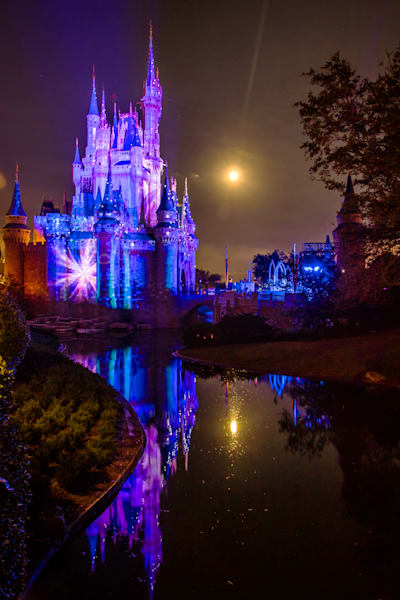 A Frozen Holiday Wish 4 - Disney Christmas Photos | William Drew