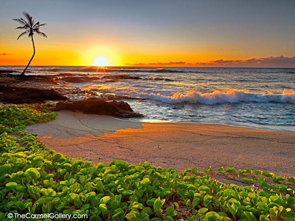 Big Island Sunset