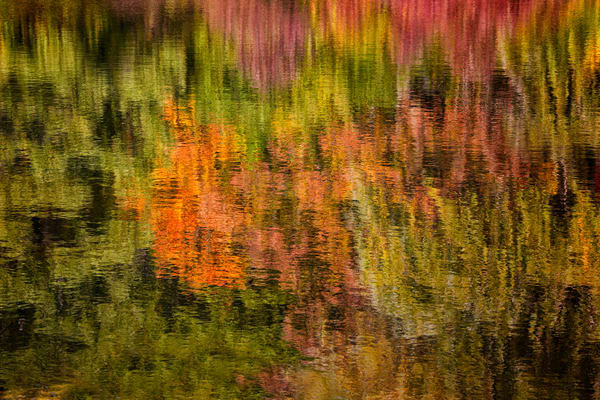 Reflections Of Fall Photography Art | Lance Rosol Fine Art Photography