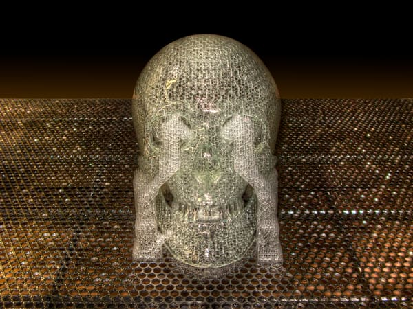 Stereolithography Skull