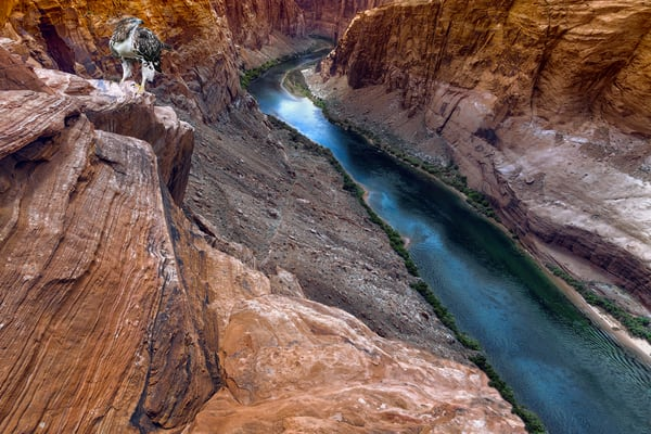 photographs of the Grand Canyon, imagery of the Colorado River, red rock canyons,
