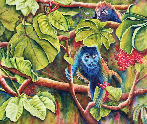 Howler Monkeys by Colleen Nash Becht