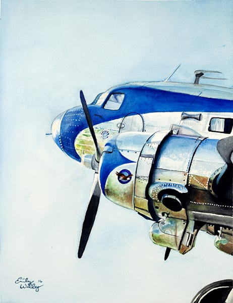 DC3 fine art print by Emily Willey.