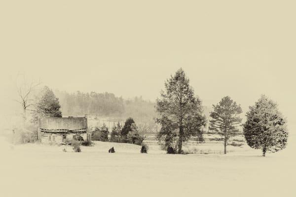 Ancient Snow