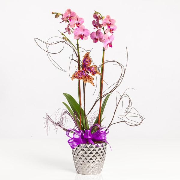 Purple Butterfly Flower Bouquet 3811.02