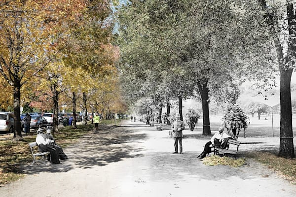 A Walk in Lincoln Park