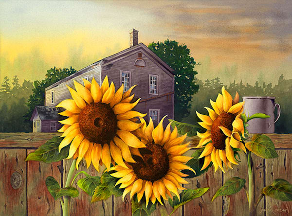 Sunshine Trio fine art print by Jim Dolan.