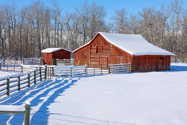 Red Barn with Fence Shadow