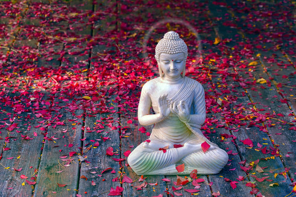 Colorful fall photography, Buddha statues and zen information, teachings of Buddha and meditation,