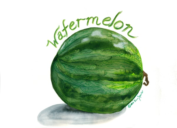 Watercolor painting green watermelon