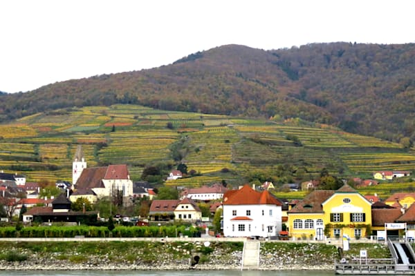 Krems, Austria landscape along the Danube IMG 1199