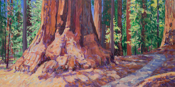 A Walk on Congress Trail in Sequoia National Park