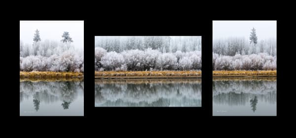 Multi-Panel Fine Art Photographic Prints for Sale
