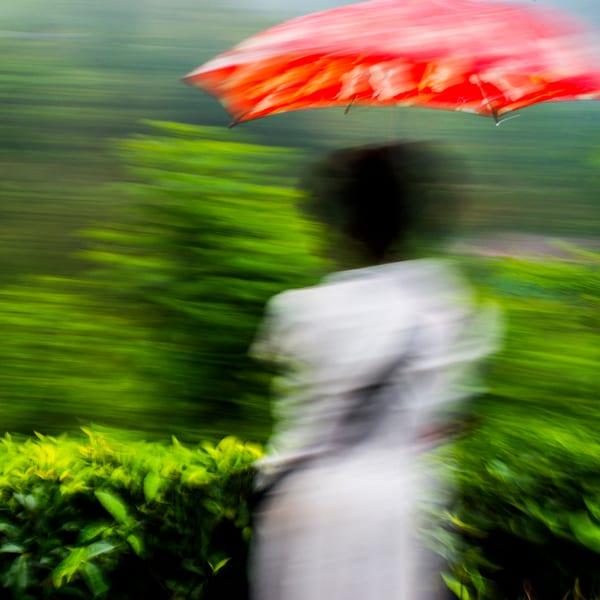 Diaphragmatic Hiatus #5 - Sri Lanka