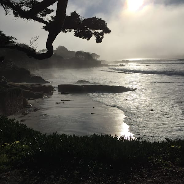 Fog Near Carmel California