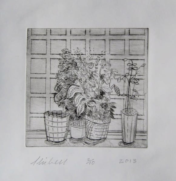 Plants and Empty Pots against Square Wallpaper