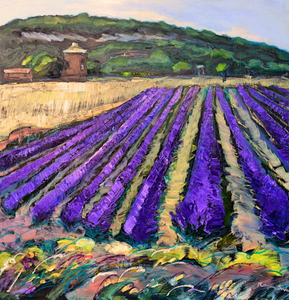 Provence Lavender Field Oil painting