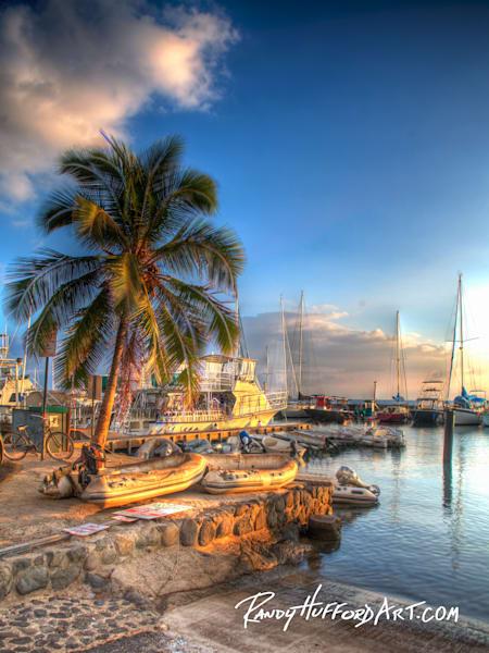 Harbor Palm