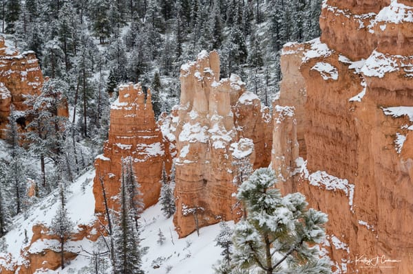 Snow Is Over In Bryce Paradise Photography Art | Images2Impact