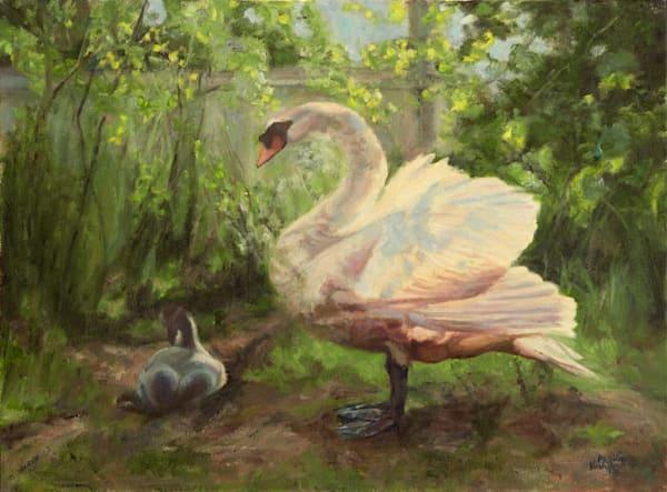 Parenting Swan fine art print by Phyllis Verhyen.