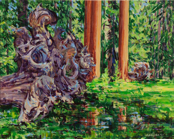 Reflection in a Wet Meadow with Fallen Giant Sequoia Trees
