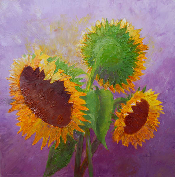 """Sunflower Trio"" by Judy Johnson 
