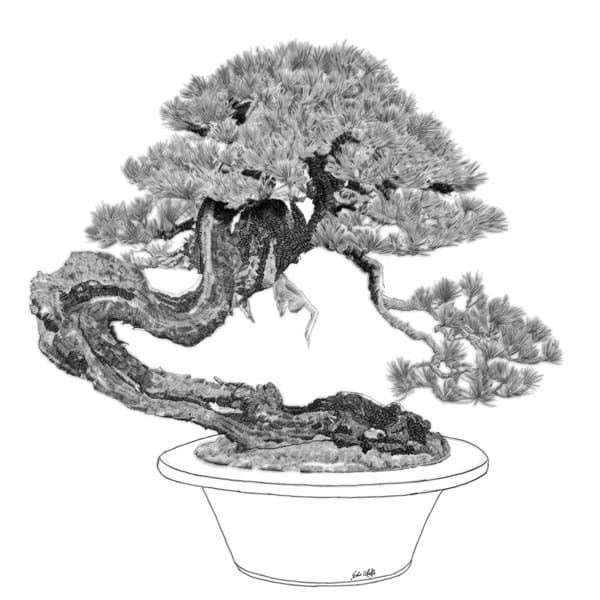 "Digital etching by Eric Wallis, inventor of the technique, titled, ""Bonsai Five."""