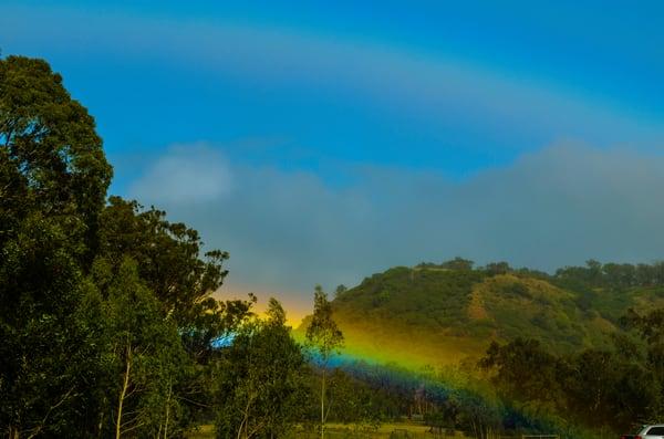 Maui Rainbow 005
