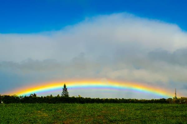 Maui Rainbow 004
