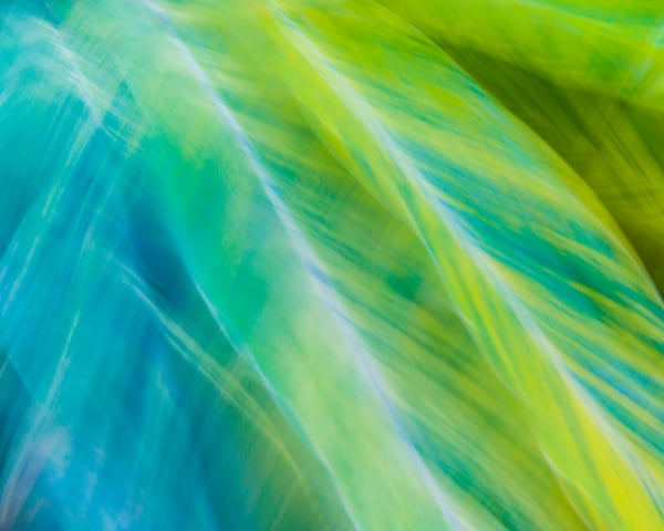 Natural Motion # 34 - Abstract Art Photographs for sale great for interior design. Ron Pickering Photography