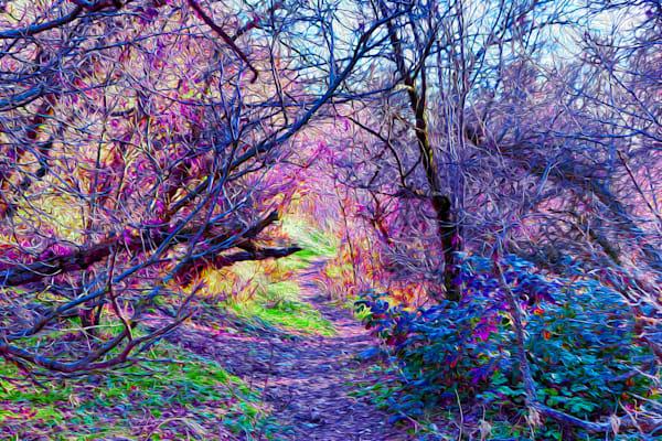 Wonderland Art | Oz Fine Art Studio