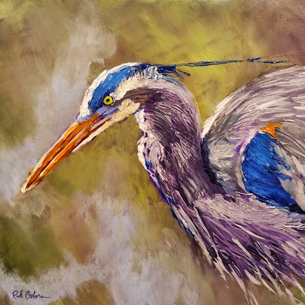 Original Square Great Blue Heron | Fine Art Print by Rick Osborn