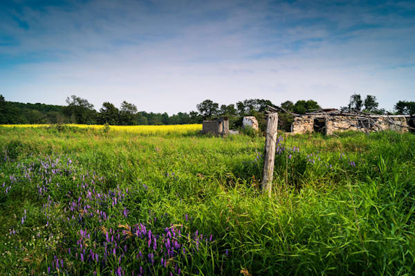 Country & Ruralscape  photographs for sale as fine art | Sage & Balm Photography