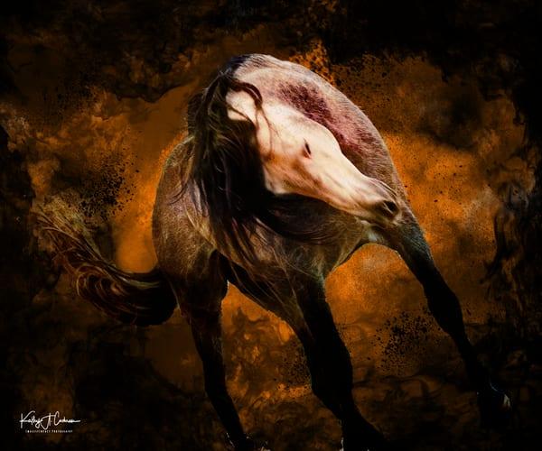 Equine Inferno 2A