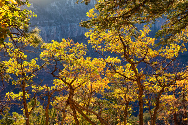 North Rim Sunscreen (1810098LNND8) Photograph for Sale as Fine Art Print
