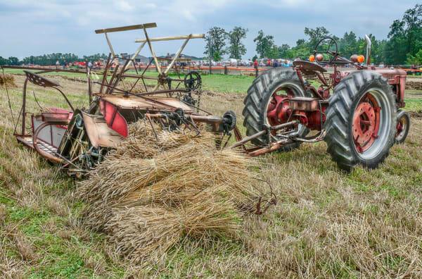McCormick Deering Harvesting Binder International Harvester Wheat fleblanc