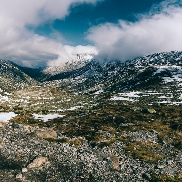 Apine Tundra - Pfischerjoch
