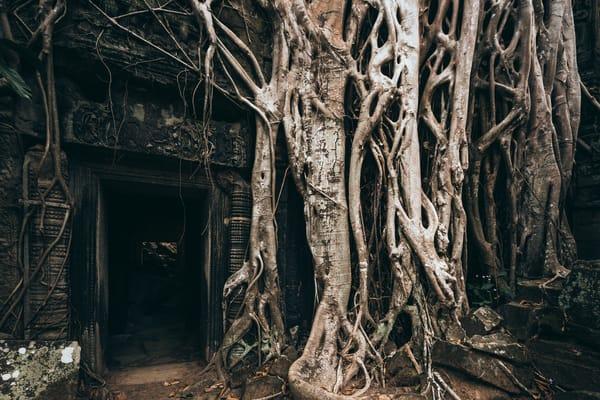 Thom Raider temple