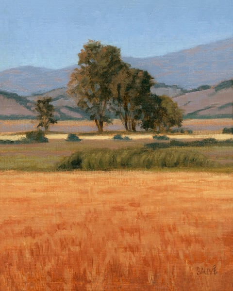 Summertime Fields and Trees | Northern California Painting