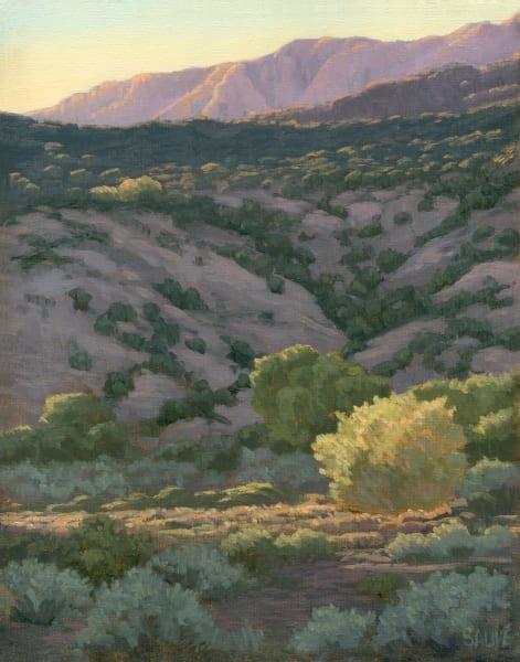 Above The Rio Grande Art | Terry Sauve Fine Art